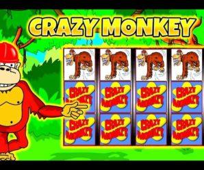 Где найти слот Crazy Monkey
