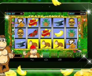 Игровой слот Crazy Monkey в казино Вулкан